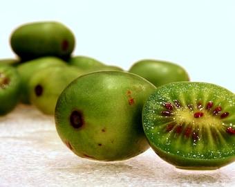 Baby Kiwi, Hardy Kiwi, Actidia arguta 12+ seeds