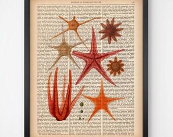 Morine art, Starfish print, Instant download dictionary print, Sea art, Antique print, Printable wall art, Starfish art, 8x10, 11x14 print