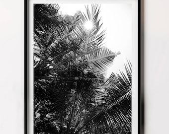 Palm Leaf Print, Palm Tree Print, Black and White, Downloadable Print, Tropical Photography, Botanical Art,
