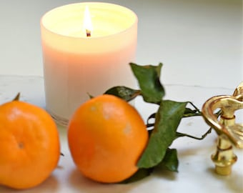 Sugared Citrus Soy Candle