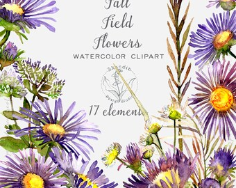 Watercolor clipart, flower clipart, Fall Wedding Clipart, boho wedding clipart, wildflower clipart, handpainted clipart, woodland clipart