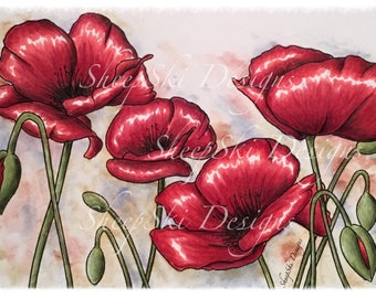 Poppies - image no 116