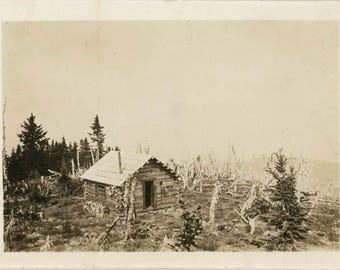 vintage Snapshot 1915 Our Little Log Cabin Where we Eat Sleep & Get FAt Doncha Know