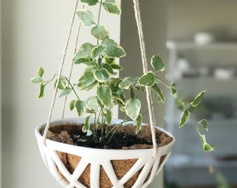 XX Hanging Planter