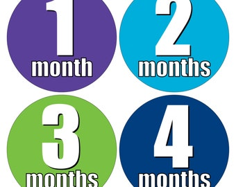 12 Monthly Baby Milestone Waterproof Glossy Stickers - Just Born - Newborn - Weekly stickers available - Design M017-10