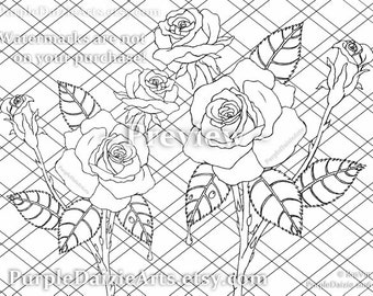 Adult Roses Coloring Page Printable Colour Digital Color Sheet Rose Buds Bud Cluster Flowers Line Drawing JPEG File Art Instant Download