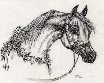 Arabian horse original ink drawing