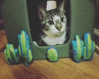 Cactus Catnip Chew