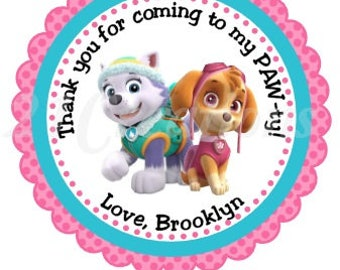 Paw Patrol Everest and Skye Stickers