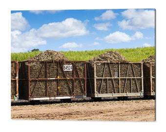 120x80cm wall art print - harvested sugar cane train ready for crushing - rural agricultural countryside acrylic photo print 1544