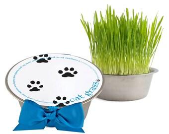 Cat Grass Pet Bowl – Cat gift – Kitten – Cat Lover – Wheat Grass– Eco Friendly – Indoor Garden - Pet Garden - Indoor Pet - Gifts for Pets