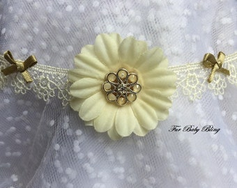 Diamond Daisies lace dog necklet (neck size 12-14 inches)