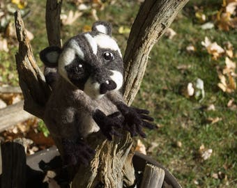 Cute Baby Raccoon, Realistic Needle Felted Sculpture in 100% Wool