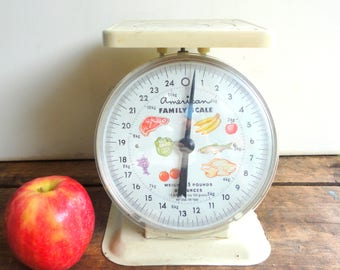 Vintage Kitchen Food Scale by American Family Scale, Kitchen Utensil, Small Appliance, Farmhouse Kitchen, Rustic Kitchen