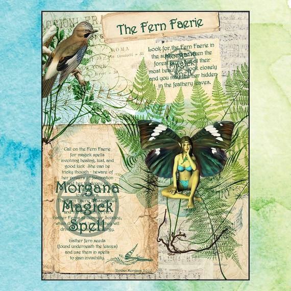 The Fern Faerie