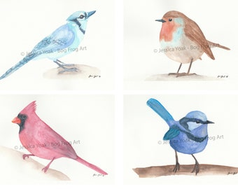 Bird Series - Set of 4