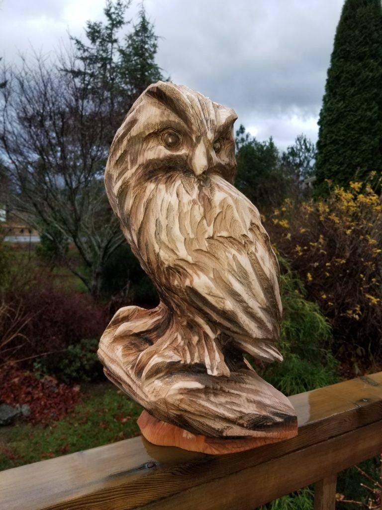 Used wood carving owl sat on books in gl dean for £ u shpock