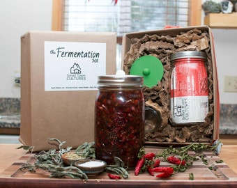 Glass Lacto Fermentation Kit with Basic Recipe and Airlock... Make Kimchi, Sauerkraut, Pickles, and other Probiotic Rich Fermented Foods