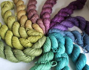 Earth Rainbow Mini Skein Set - BFL 4 Ply