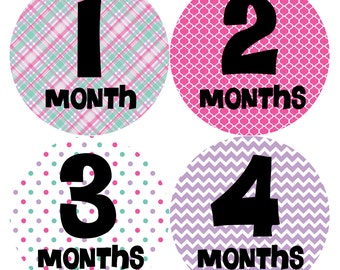 Monthly Baby Stickers Baby Month Stickers Baby Girl Month Stickers Monthly Photo Stickers Monthly Milestone Stickers 204