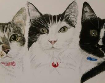 Pet Painting, Pet Memorial, Cat Painting, Cat Picture, Wall Art, Custom Painting, For The Home, Pet Portrait, Cat Portrait, Cat Lover