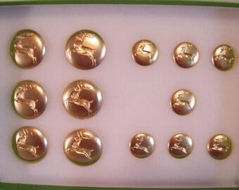 "Double set of Reindeer buttons 1 1/8"" & 3/4"" Brass"