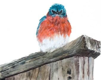 Eastern Bluebird on a Birdhouse Fine Art Print Watercolor Original Farmhouse Home Office Nursery Decor Pet Birds Birding Backyard Garden