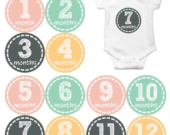 Monthly Baby Stickers Baby Month Stickers Baby Girl Month Stickers Monthly Photo Stickers Monthly Milestone Stickers 171