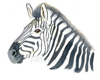 Watercolour Zebra Print