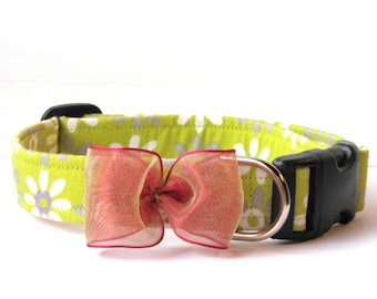 Super Springy Chartreuse dog collar