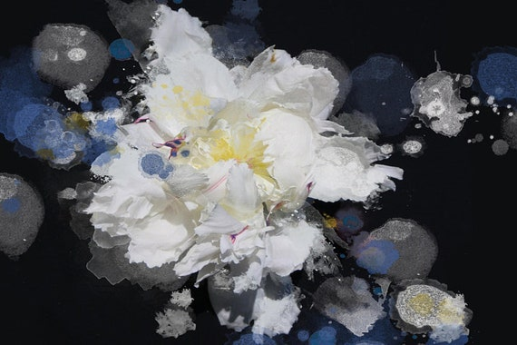 """Breathless 3, Floral Painting Print, Black Blue White Floral Art, Large Blue White Contemporary Canvas Art Print up to 72"""" by Irena Orlov"""