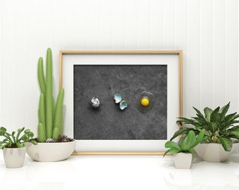 quail egg v. three // food photography print // kitchen decor // kitchen wall art  // dining room wall art // rustic wall art // egg print