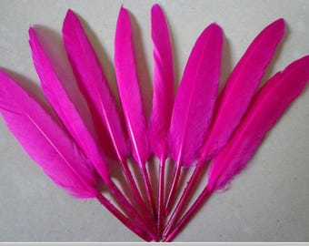 set of 10 various confections GO premium goose feathers