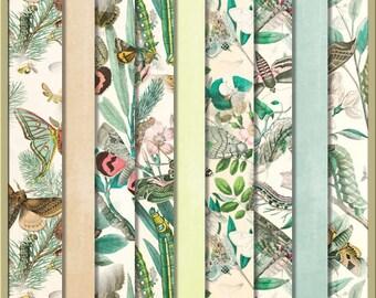 Butterfly Garden Digital Papers - butterflies botanical blue green pink beige 12 x 12 papers - INSTANT DOWNLOAD