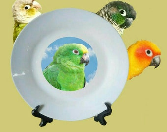 "Yellow-crowned Amazon Parrot Blue Sky Clouds White Decorative Ceramic 8"" Plate and Display Stand"