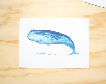 Sperm Whale Watercolour Illustration Print // A6 Print Postcard // Sea Animals // Nursery Bedroom Decor // Animal Print