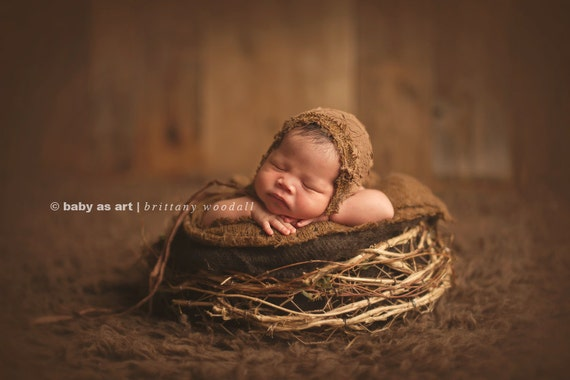 Items similar to twiggy nest birds nest photo prop newborn photography prop newborn prop organic prop on etsy