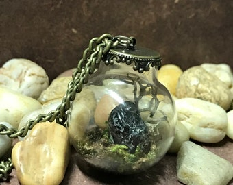 Mini Terrarium Necklace with Apache Tears Stone