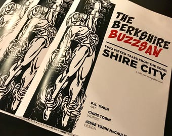 The Berkshire Buzzsaw   A Color Your Own Graphic Novel