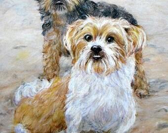 Custom Pet Portrait Original Drawing, by artist Robin Zebley, Christmas Gift for Dog Lover, Cat Art, Dog Art, Gifts for Him Gift Certificate
