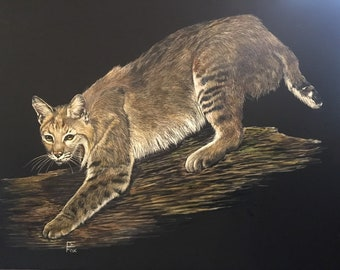 Bob.Cat - detailed, realistic rendering of a bobcat on the hunt.
