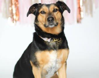 Pink Crown for Pets - Dog Crown - Pet Crown - Cat Crown - Mini Aspen Lace - Smash Cake - Photography Prop