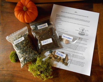 The kit diy terrarium kit all you need is the container do it yourself terrarium kit without container small and medium sized solutioingenieria Image collections