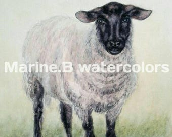 Watercolor sheep art print 8 x 10 in