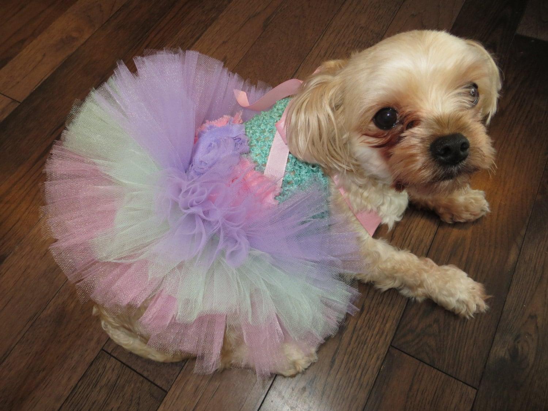 Hund Tutu Hund Rock Hundekostüm Hund Kleid Hund Outfit