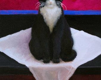 Mattie the Cat