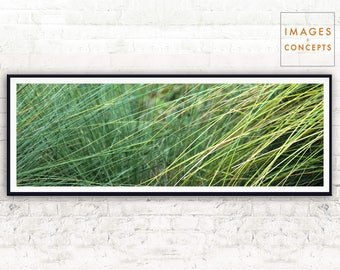 Large Wall Art ~ Nature Photograph ~ Panoramic Print ~ Home Decor ~ Printable Photography ~ Large Printable Art ~ Digital Download ~ Green