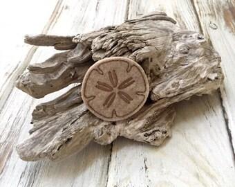 UNCUT Summer Sand dollar applique embellishment felties (4)