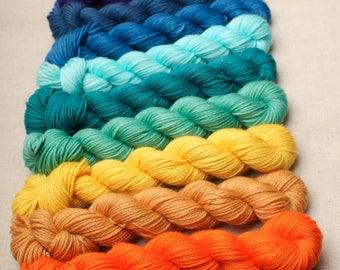 hand dyed yarn 50g skeins. DK weight