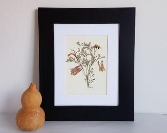 Pressed flower art 8x10 matted original pressed flower artwork made with real dried flowers - Dried pressed flower - Herbarium specimen